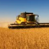 "Greek insurance companies ""enter"" the agricultural sector"